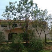 Motel Kunu'u Villarrica