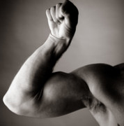 Bíceps Gimnasio