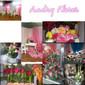 Andry Flores de LUGARES Y COMERCIOS en VILLA ELISA