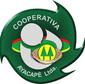 Cooperativa Ayacape Ltda. - Juan E. O'leary de LUGARES Y COMERCIOS en JUAN EMILIO OLEARY