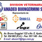 Amadeo Boungermini S.R.L.