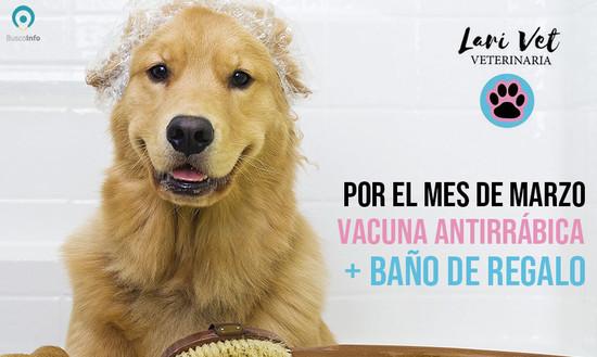 Vacuna antirrábica con baño de REGALO!
